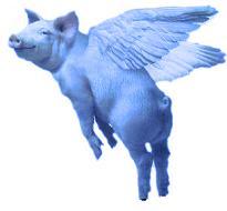 Flying Pig blue
